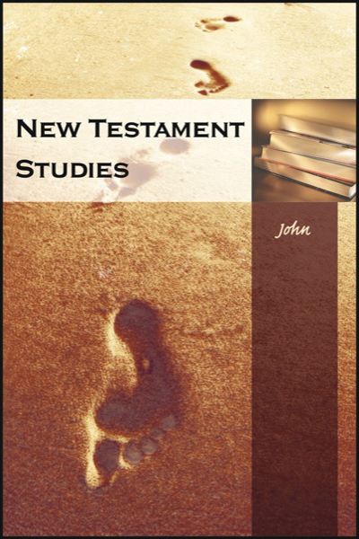 new_testament_studies___john